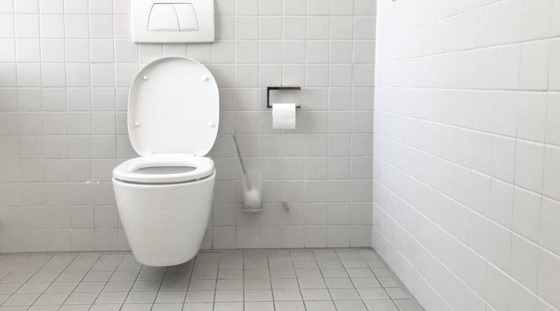 deboucher-des-toilettes